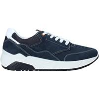 Boty Muži Nízké tenisky IgI&CO 5132033 Modrý