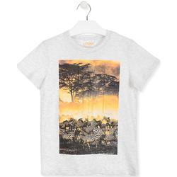 Textil Děti Trička s krátkým rukávem Losan 013-1017AL Bílý