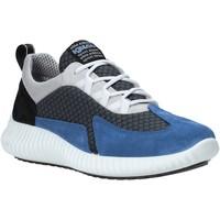 Boty Muži Nízké tenisky IgI&CO 5123611 Modrý