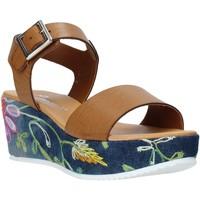 Boty Ženy Sandály Grace Shoes 02 Hnědý
