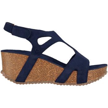 Boty Ženy Sandály Docksteps DSE106243 Modrý