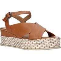 Boty Ženy Sandály Bueno Shoes Q5901 Hnědý