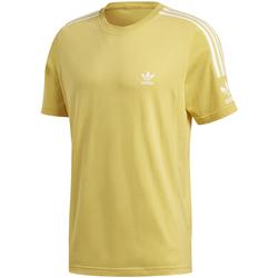 Textil Muži Trička s krátkým rukávem adidas Originals FM3812 Žlutá