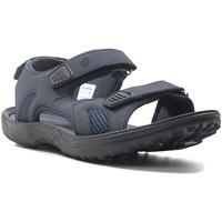 Boty Muži Sportovní sandály Lotto L52292 Modrý