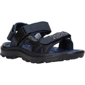 Boty Muži Sportovní sandály Lotto L52294 Modrý