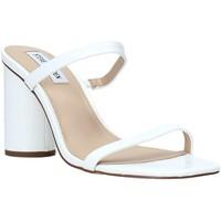 Boty Ženy Sandály Steve Madden SMSKATO-WHTC Bílý