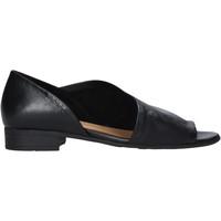Boty Ženy Sandály Bueno Shoes N5112 Černá