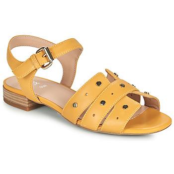 Boty Ženy Sandály Geox D WISTREY SANDALO C Žlutá