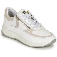 Boty Ženy Nízké tenisky Geox D AIRELL A Bílá / Béžová