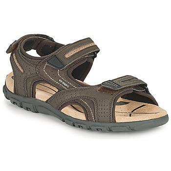 Boty Muži Sportovní sandály Geox UOMO SANDAL STRADA D Hnědá / Béžová
