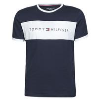 Textil Muži Trička s krátkým rukávem Tommy Hilfiger CN SS TEE LOGO FLAG Tmavě modrá / Bílá
