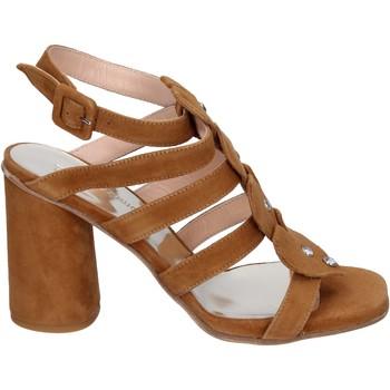 Boty Ženy Sandály Sergio Cimadamore Sandály BK866 Hnědý