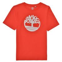 Textil Chlapecké Trička s krátkým rukávem Timberland LOLLA Červená