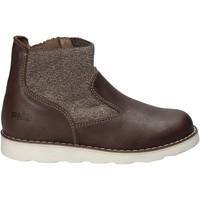 Boty Děti Kotníkové boty Primigi 8107 Hnědý