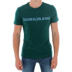 Textil Muži Trička s krátkým rukávem Calvin Klein Jeans J30J307856 383 GREEN Verde oscuro