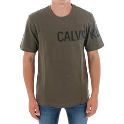 Textil Muži Trička s krátkým rukávem Calvin Klein Jeans J30J313258 LFH GRAPE LEAF Verde