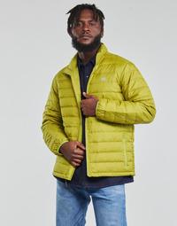Textil Muži Prošívané bundy Levi's OASIS Zelená
