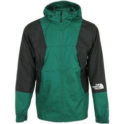 Textil Muži Větrovky The North Face Mountain Light Wind Jacket Zelená