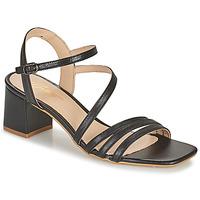 Boty Ženy Sandály Betty London OCHANTE Černá