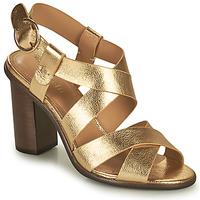 Boty Ženy Sandály Minelli THIYA Zlatá
