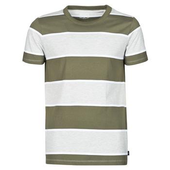 Textil Muži Trička s krátkým rukávem Esprit T-SHIRTS Khaki