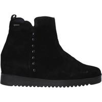 Boty Ženy Kotníkové boty IgI&CO 6155033 Černá