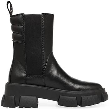 Boty Ženy Kotníkové boty Steve Madden SMSTRANSAM-BLK Černá