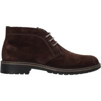 Boty Muži Kotníkové boty IgI&CO 6108644 Hnědý