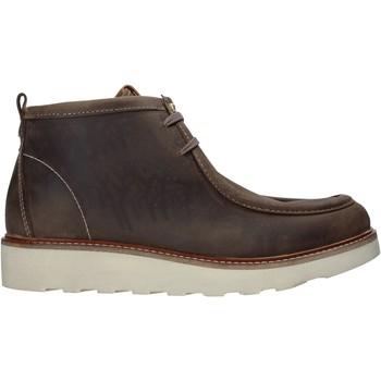 Boty Muži Kotníkové boty Docksteps DSM204003 Hnědý