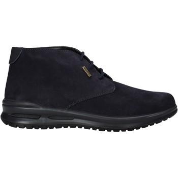 Boty Muži Kotníkové boty Valleverde VL53823 Modrý