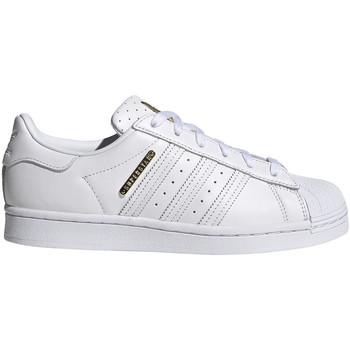 Boty Ženy Nízké tenisky adidas Originals FW3713 Bílý