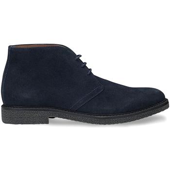 Boty Muži Kotníkové boty Docksteps DSE106026 Modrý
