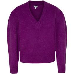 Textil Ženy Svetry Pepe jeans PL701678 Fialový