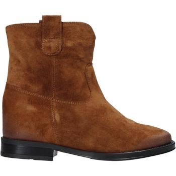 Boty Ženy Kotníkové boty Pregunta MAA3307 Hnědý