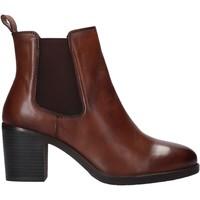 Boty Ženy Kotníkové boty Café Noir XV126 Hnědý