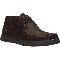 Boty Muži Kotníkové boty Enval 6220822 Hnědý