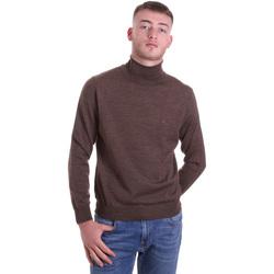 Textil Muži Svetry Navigare NV11006 33 Hnědý