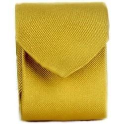 Textil Muži Kravaty a doplňky Michi D'amato CRAVATTA 002 Žlutá