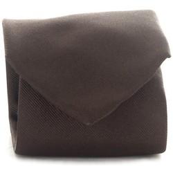 Textil Muži Kravaty a doplňky Michi D'amato CRAVATTA 001 Hnědá
