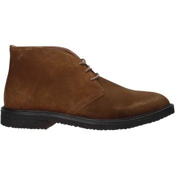 Boty Muži Kotníkové boty Docksteps DSE106025 Hnědý