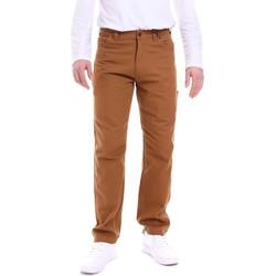 Textil Muži Kalhoty Dickies DK121172BD01 Hnědý