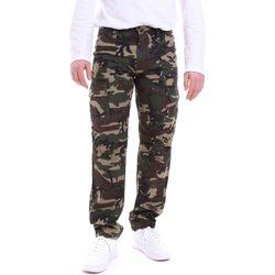 Textil Muži Kalhoty Dickies DK121121CF01 Zelený