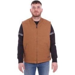 Textil Muži Svetry / Svetry se zapínáním Dickies DK0A4X8UBD01 Hnědý
