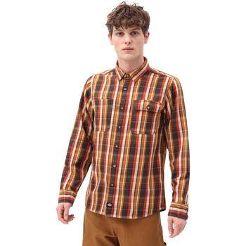 Textil Muži Košile s dlouhymi rukávy Dickies DK0A4X5LBD01 Hnědý