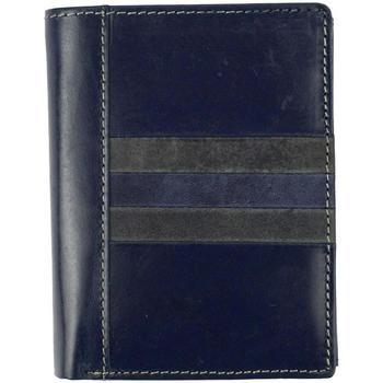 Taška Muži Náprsní tašky Wild Kožená pánská peněženka modrá modrá