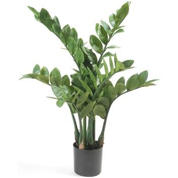 Bydlení Umělé rostliny Emerald Umělá rostlina 70 cm Vert