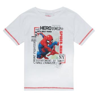 Textil Chlapecké Trička s krátkým rukávem TEAM HEROES  SPIDERMAN TEE Bílá