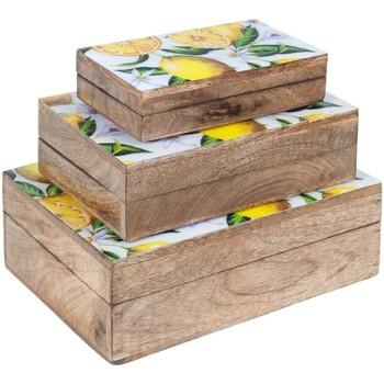 Bydlení Kufry, úložné boxy Signes Grimalt 3.Září Krabice Citrony Marrón