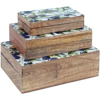Bydlení Kufry, úložné boxy Signes Grimalt 3 Září Krabice Olivy Marrón