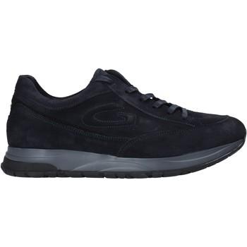 Boty Muži Nízké tenisky Alberto Guardiani AGM004800 Modrý